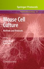 Mouse Cell Culture