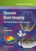 Dynamic Brain Imaging