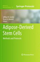 Adipose-Derived Stem Cells
