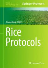Rice Protocols