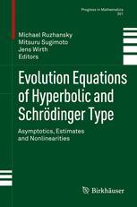 Evolution Equations of Hyperbolic and Schrödinger Type