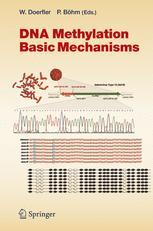 DNA Methylation: Basic Mechanisms