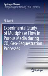 Experimental Study of Multiphase Flow in Porous Media during CO2 Geo-Sequestration Processes