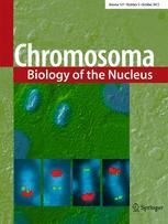 Chromosoma