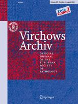 Virchows Archiv