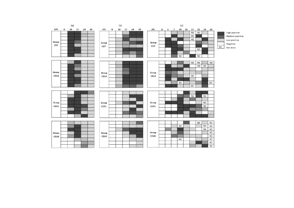 http://static-content.springer.com/image/art%3A10.1186%2F1297-9716-43-69/MediaObjects/13567_2012_Article_189_Fig4_HTML.jpg