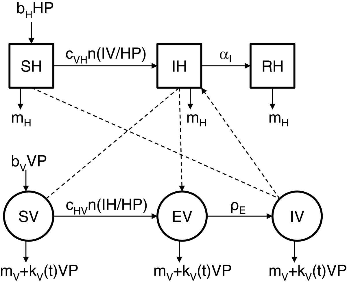 http://static-content.springer.com/image/art%3A10.1186%2F1297-9716-44-44/MediaObjects/13567_2013_Article_253_Fig1_HTML.jpg