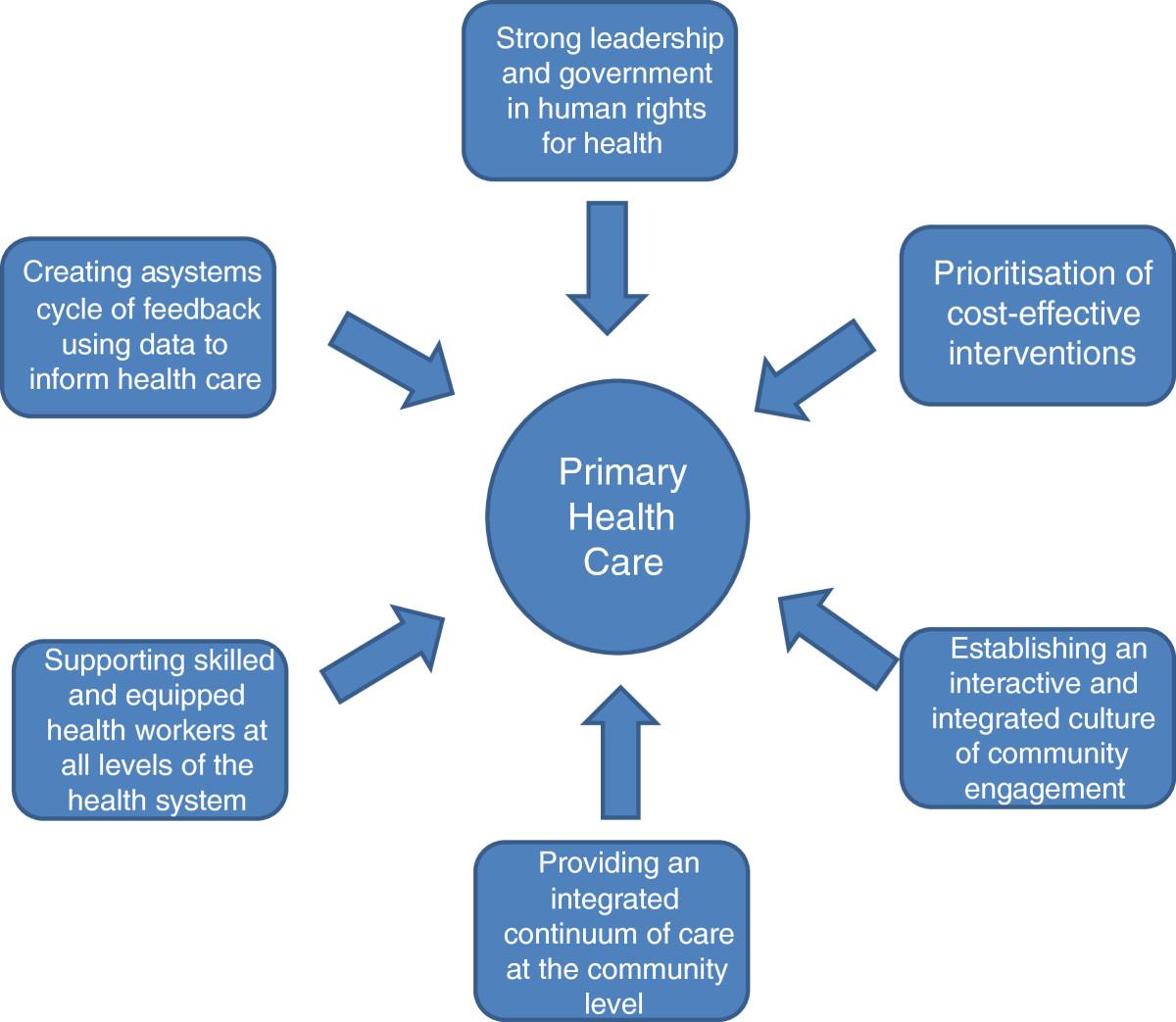 primary care setting analyzing palpitations essay