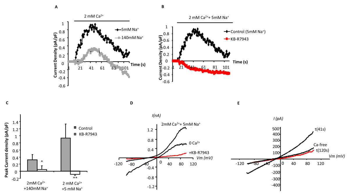 http://static-content.springer.com/image/art%3A10.1186%2F1465-9921-11-168/MediaObjects/12931_2009_Article_1011_Fig2_HTML.jpg