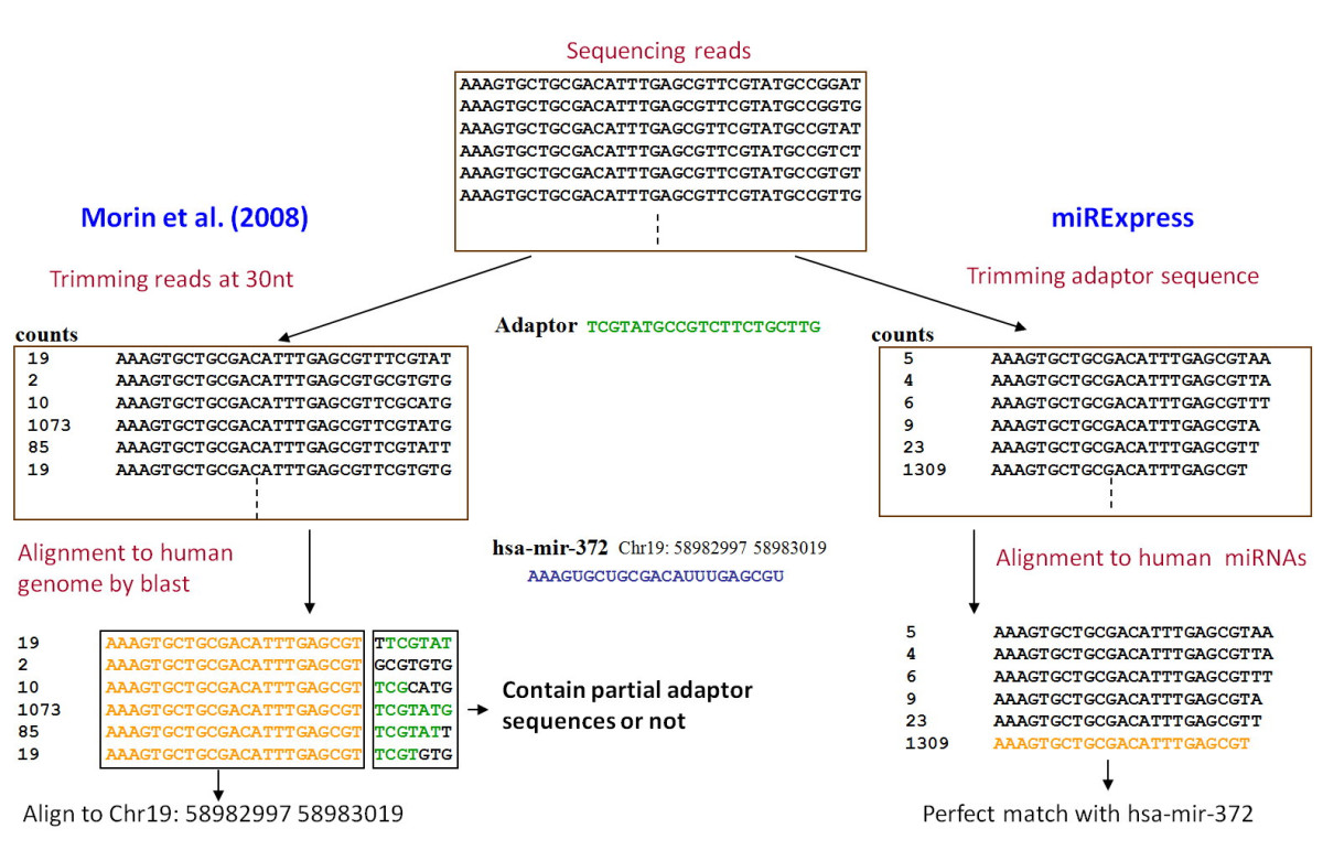 http://static-content.springer.com/image/art%3A10.1186%2F1471-2105-10-328/MediaObjects/12859_2009_Article_3058_Fig6_HTML.jpg