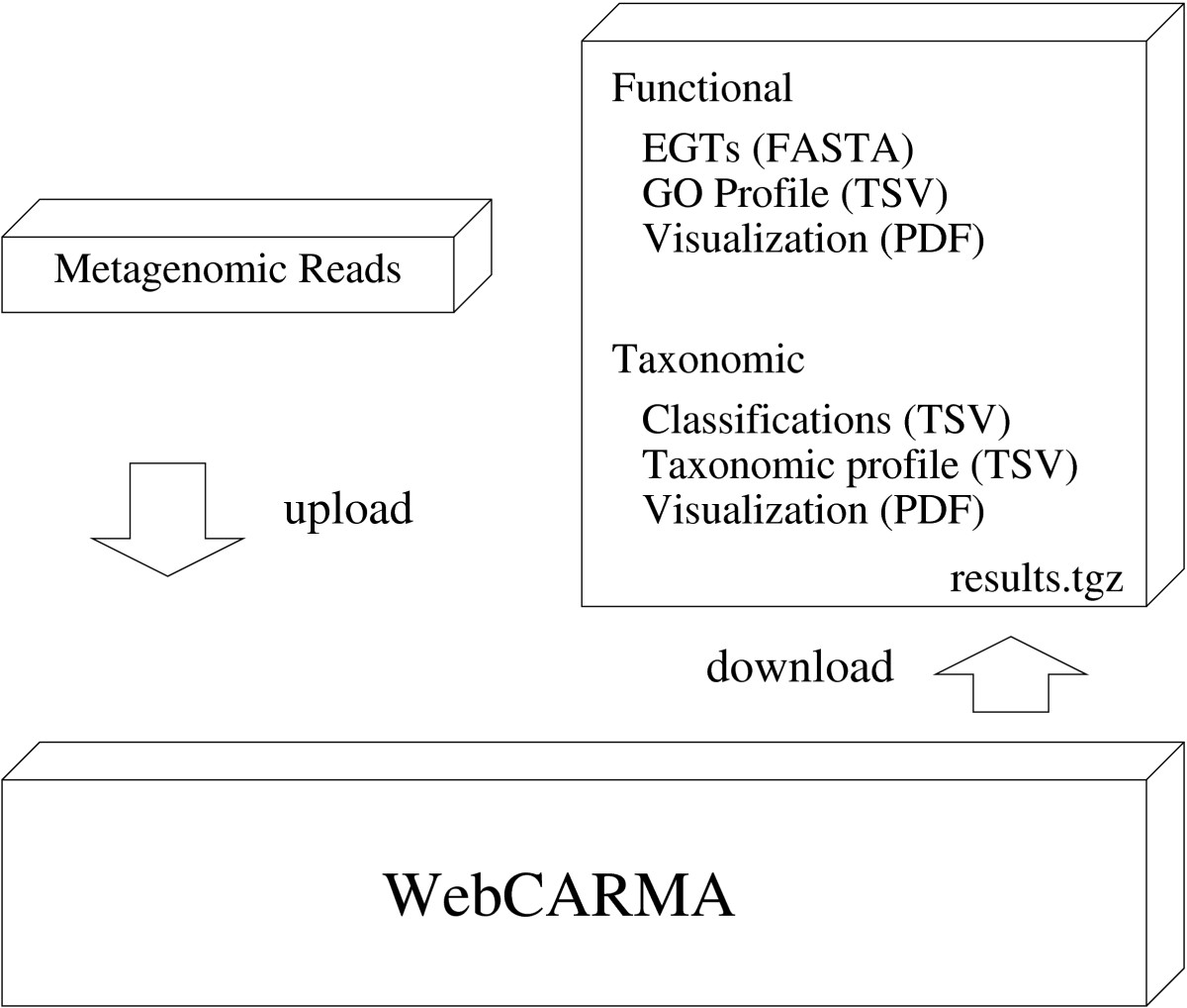 http://static-content.springer.com/image/art%3A10.1186%2F1471-2105-10-430/MediaObjects/12859_2009_Article_3160_Fig1_HTML.jpg