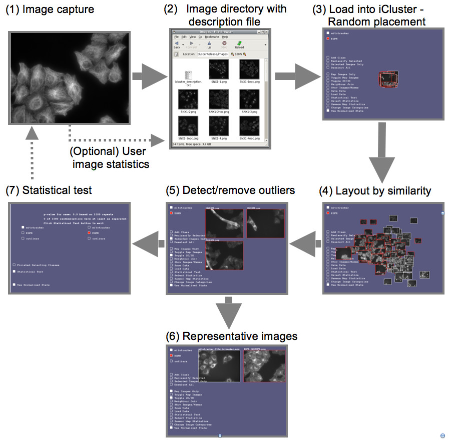 http://static-content.springer.com/image/art%3A10.1186%2F1471-2105-10-94/MediaObjects/12859_2008_Article_2824_Fig2_HTML.jpg