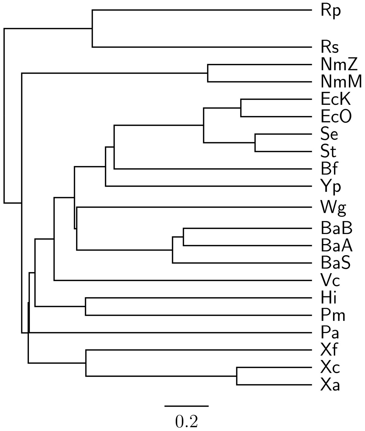 http://static-content.springer.com/image/art%3A10.1186%2F1471-2105-11-102/MediaObjects/12859_2009_Article_3559_Fig4_HTML.jpg