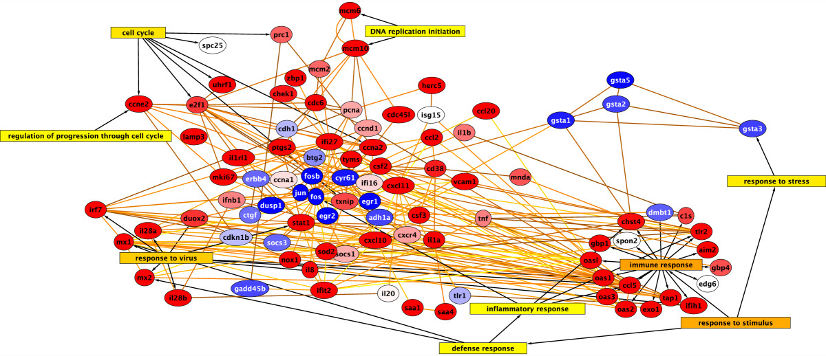 http://static-content.springer.com/image/art%3A10.1186%2F1471-2105-11-170/MediaObjects/12859_2009_Article_3627_Fig2_HTML.jpg