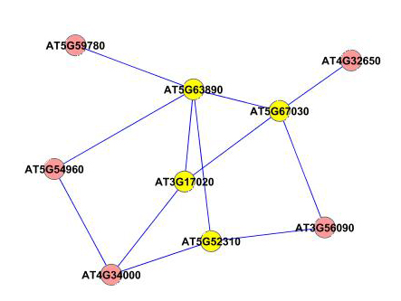 http://static-content.springer.com/image/art%3A10.1186%2F1471-2105-11-68/MediaObjects/12859_2009_Article_3525_Fig11_HTML.jpg