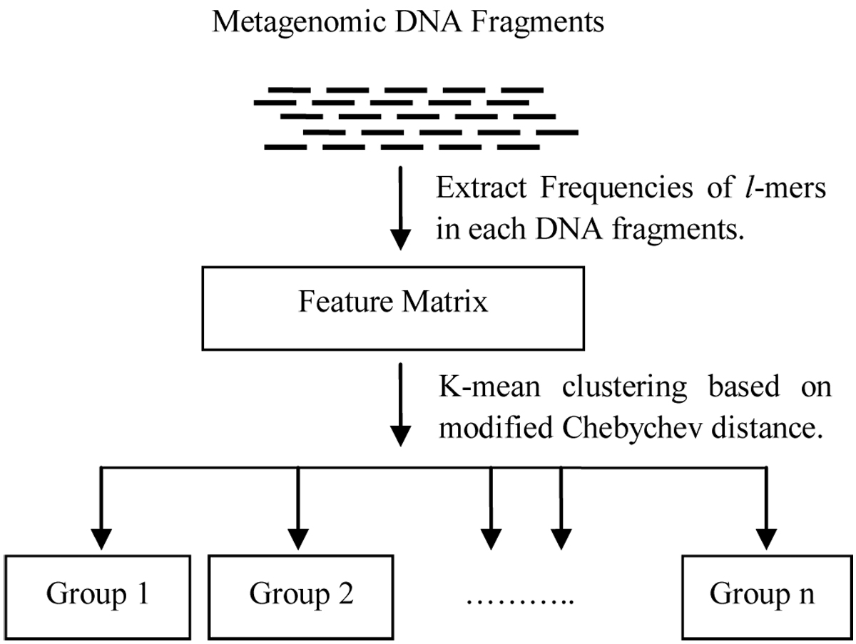 http://static-content.springer.com/image/art%3A10.1186%2F1471-2105-11-S2-S5/MediaObjects/12859_2010_Article_4022_Fig2_HTML.jpg