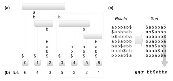 http://static-content.springer.com/image/art%3A10.1186%2F1471-2105-12-163/MediaObjects/12859_2010_4552_Fig1_HTML.jpg