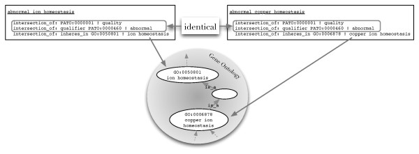 http://static-content.springer.com/image/art%3A10.1186%2F1471-2105-12-418/MediaObjects/12859_2011_4910_Fig1_HTML.jpg