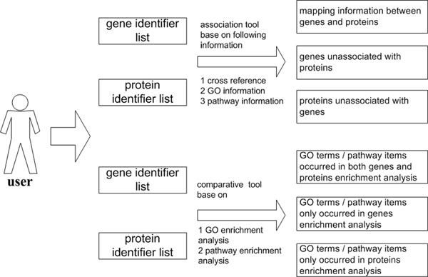 http://static-content.springer.com/image/art%3A10.1186%2F1471-2105-12-S14-S6/MediaObjects/12859_2011_4965_Fig4_HTML.jpg