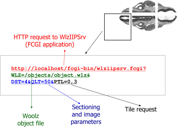 http://static-content.springer.com/image/art%3A10.1186%2F1471-2105-13-122/MediaObjects/12859_2011_5273_Fig5_HTML.jpg