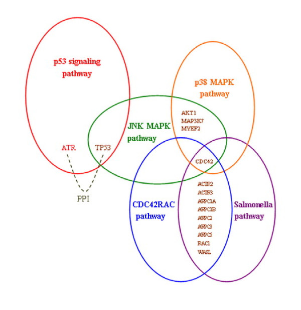 http://static-content.springer.com/image/art%3A10.1186%2F1471-2105-13-126/MediaObjects/12859_2011_5364_Fig4_HTML.jpg