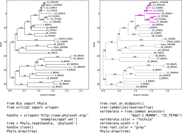 http://static-content.springer.com/image/art%3A10.1186%2F1471-2105-13-209/MediaObjects/12859_2012_5387_Fig1_HTML.jpg