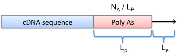 http://static-content.springer.com/image/art%3A10.1186%2F1471-2105-13-247/MediaObjects/12859_2012_5797_Fig2_HTML.jpg