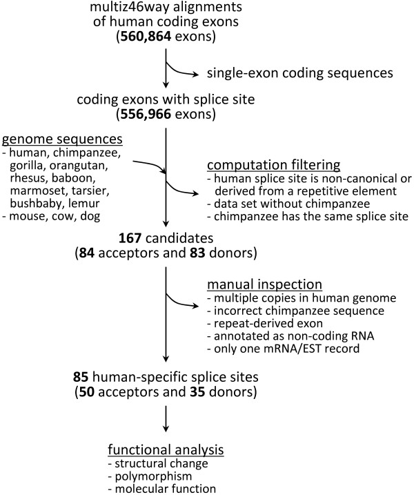 http://static-content.springer.com/image/art%3A10.1186%2F1471-2105-13-299/MediaObjects/12859_2012_5568_Fig4_HTML.jpg