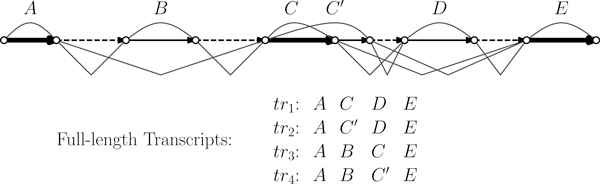 http://static-content.springer.com/image/art%3A10.1186%2F1471-2105-13-S5-S2/MediaObjects/12859_2012_5129_Fig1_HTML.jpg