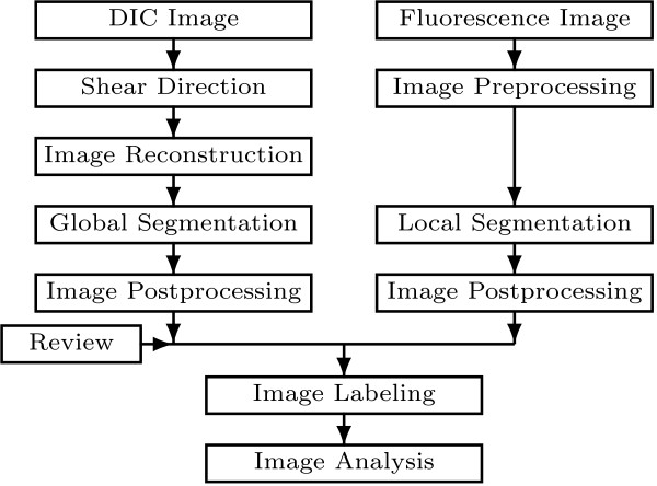 http://static-content.springer.com/image/art%3A10.1186%2F1471-2105-14-134/MediaObjects/12859_2012_5993_Fig8_HTML.jpg