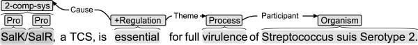 http://static-content.springer.com/image/art%3A10.1186%2F1471-2105-14-2/MediaObjects/12859_2012_5765_Fig3_HTML.jpg