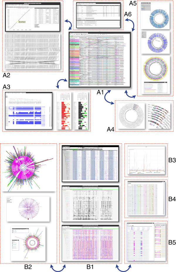 http://static-content.springer.com/image/art%3A10.1186%2F1471-2105-14-277/MediaObjects/12859_2013_6057_Fig1_HTML.jpg