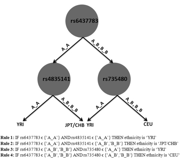http://static-content.springer.com/image/art%3A10.1186%2F1471-2105-14-61/MediaObjects/12859_2013_5763_Fig2_HTML.jpg