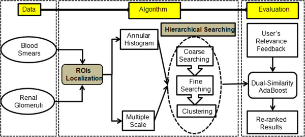 http://static-content.springer.com/image/art%3A10.1186%2F1471-2105-15-287/MediaObjects/12859_2013_6557_Fig1_HTML.jpg