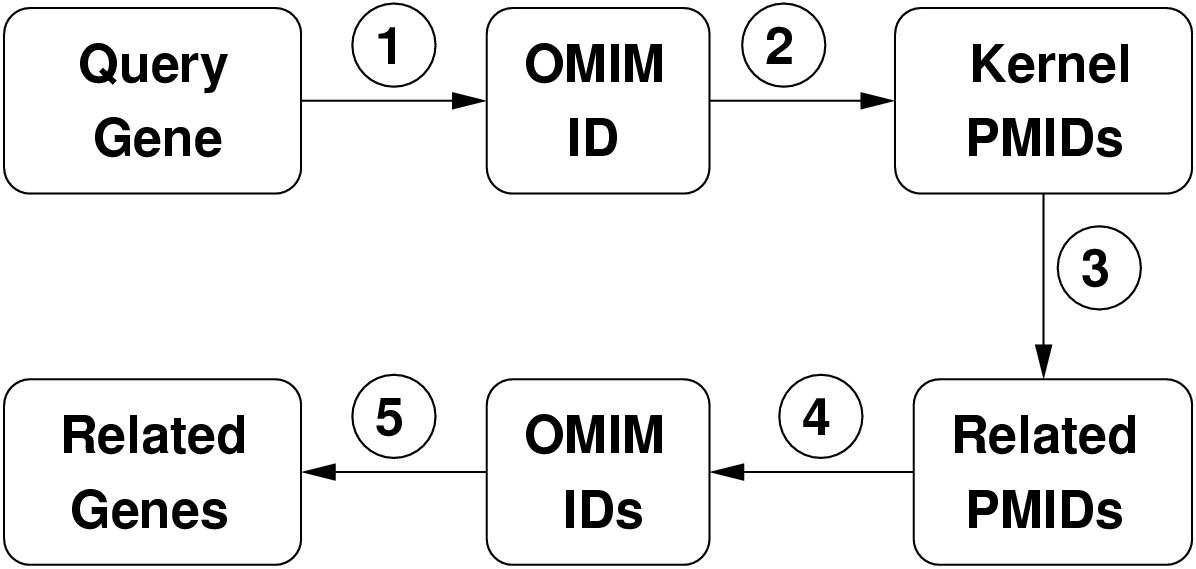 http://static-content.springer.com/image/art%3A10.1186%2F1471-2105-3-16/MediaObjects/12859_2002_Article_26_Fig1_HTML.jpg