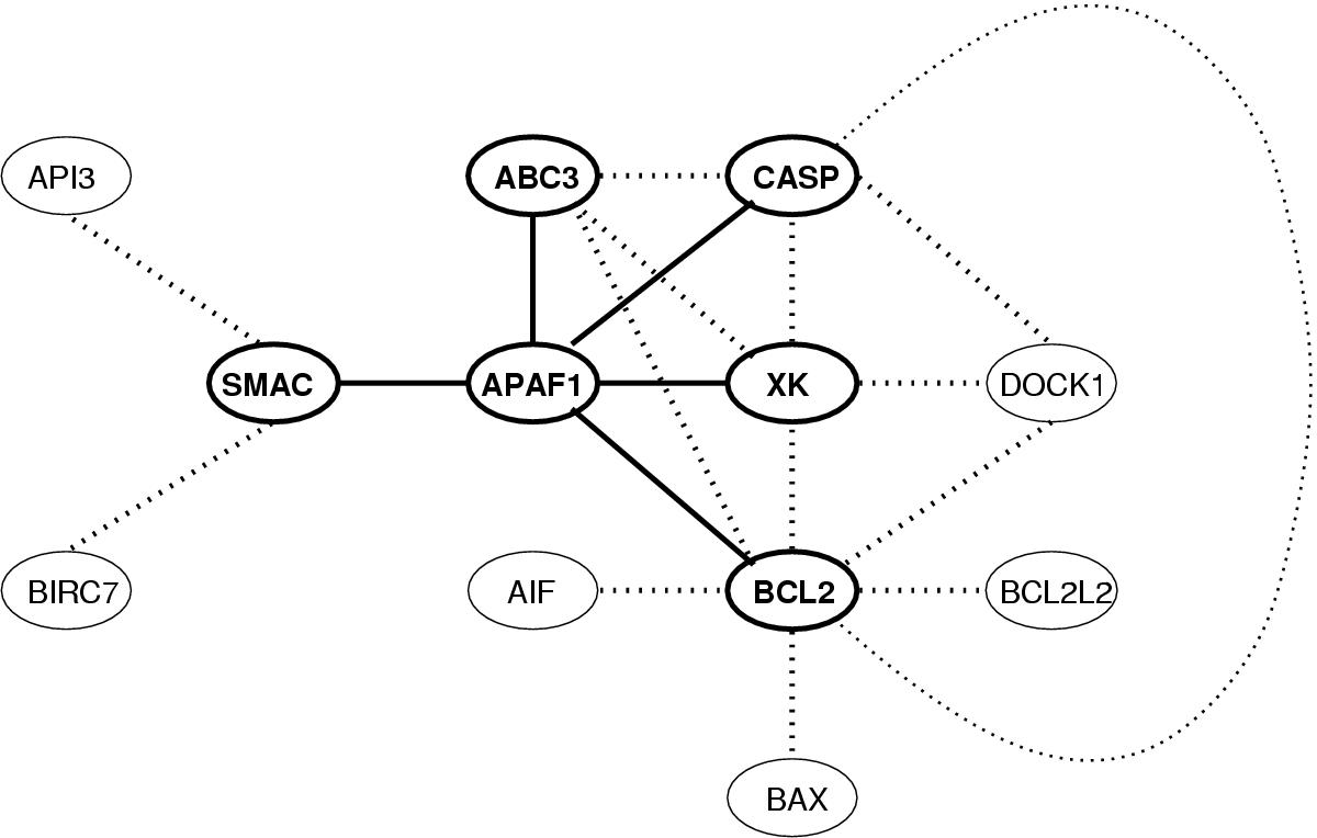 http://static-content.springer.com/image/art%3A10.1186%2F1471-2105-3-16/MediaObjects/12859_2002_Article_26_Fig3_HTML.jpg