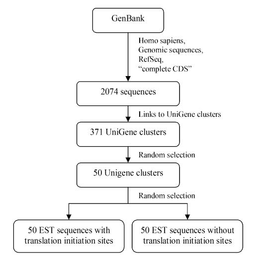 http://static-content.springer.com/image/art%3A10.1186%2F1471-2105-5-14/MediaObjects/12859_2003_Article_130_Fig6_HTML.jpg