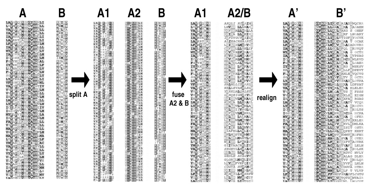 http://static-content.springer.com/image/art%3A10.1186%2F1471-2105-5-157/MediaObjects/12859_2004_Article_273_Fig3_HTML.jpg