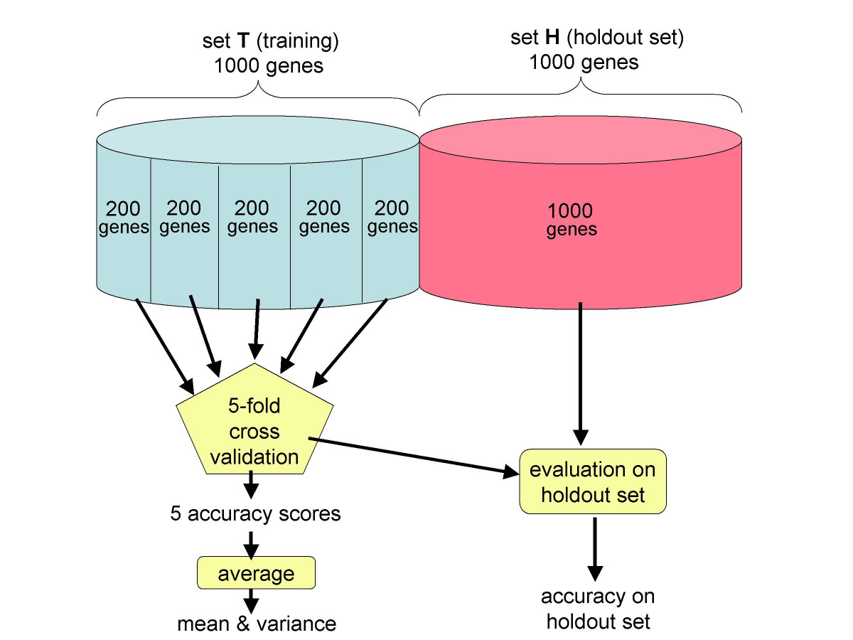 http://static-content.springer.com/image/art%3A10.1186%2F1471-2105-5-206/MediaObjects/12859_2004_Article_322_Fig6_HTML.jpg