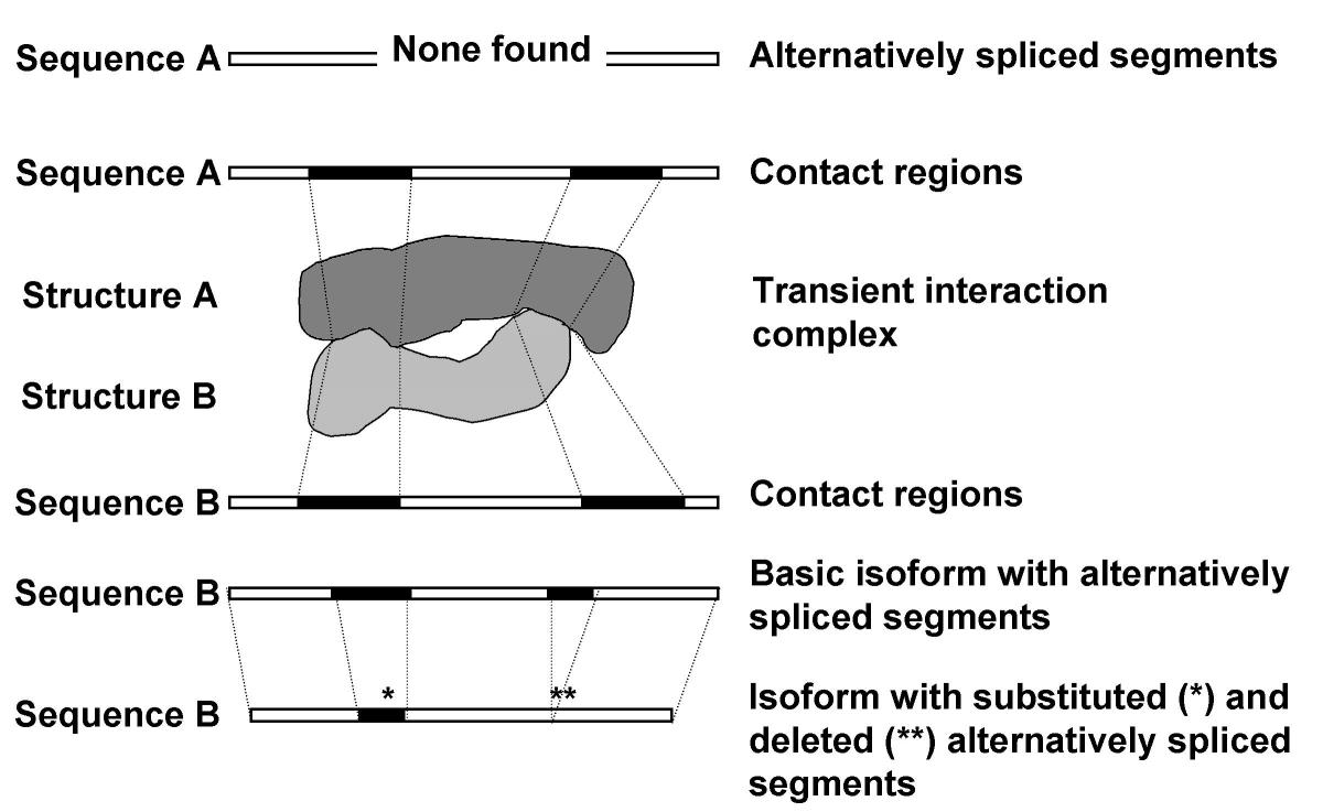 http://static-content.springer.com/image/art%3A10.1186%2F1471-2105-5-41/MediaObjects/12859_2004_Article_157_Fig1_HTML.jpg