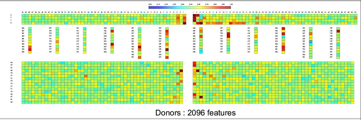 http://static-content.springer.com/image/art%3A10.1186%2F1471-2105-5-64/MediaObjects/12859_2003_Article_180_Fig6_HTML.jpg