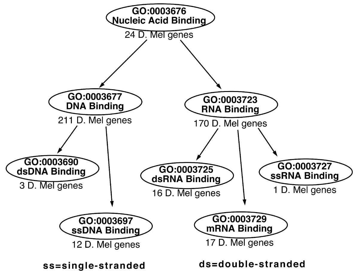 http://static-content.springer.com/image/art%3A10.1186%2F1471-2105-6-189/MediaObjects/12859_2005_Article_514_Fig1_HTML.jpg