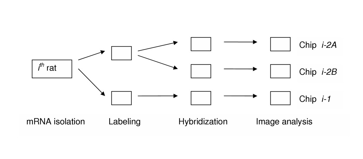 http://static-content.springer.com/image/art%3A10.1186%2F1471-2105-6-214/MediaObjects/12859_2005_Article_539_Fig1_HTML.jpg