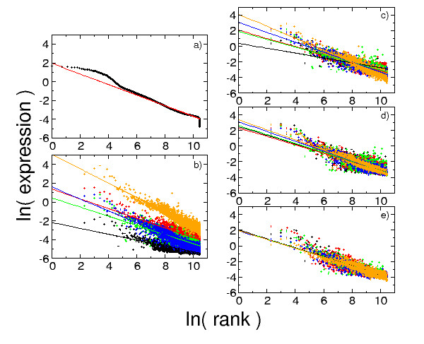 http://static-content.springer.com/image/art%3A10.1186%2F1471-2105-6-37/MediaObjects/12859_2004_Article_362_Fig1_HTML.jpg