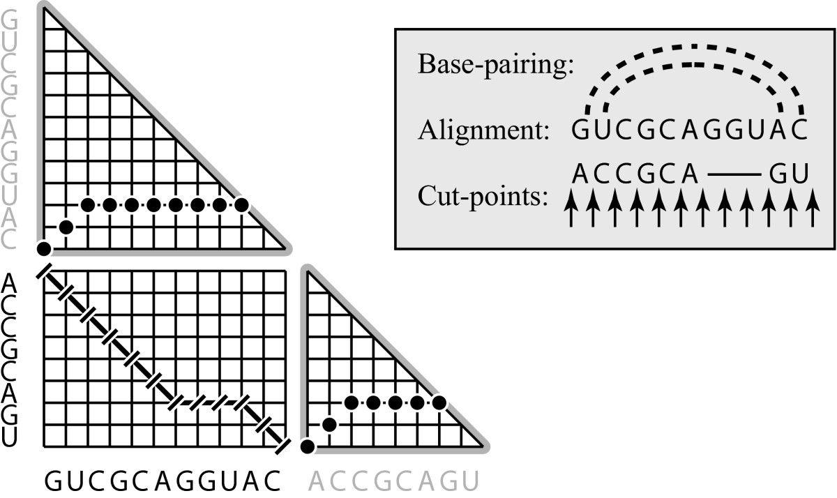 http://static-content.springer.com/image/art%3A10.1186%2F1471-2105-6-73/MediaObjects/12859_2004_Article_398_Fig5_HTML.jpg