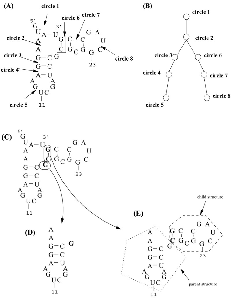http://static-content.springer.com/image/art%3A10.1186%2F1471-2105-6-89/MediaObjects/12859_2004_Article_414_Fig1_HTML.jpg