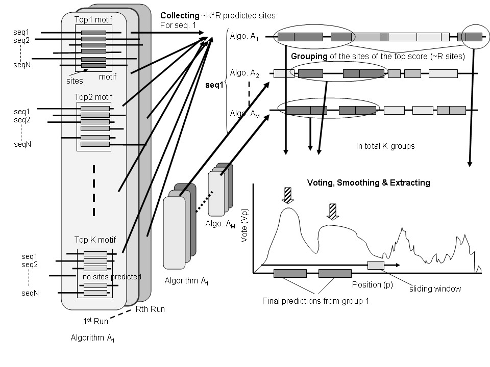 http://static-content.springer.com/image/art%3A10.1186%2F1471-2105-7-342/MediaObjects/12859_2005_Article_1081_Fig1_HTML.jpg
