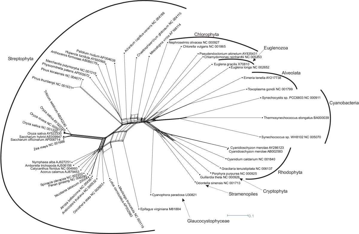 http://static-content.springer.com/image/art%3A10.1186%2F1471-2105-7-350/MediaObjects/12859_2006_Article_1089_Fig5_HTML.jpg
