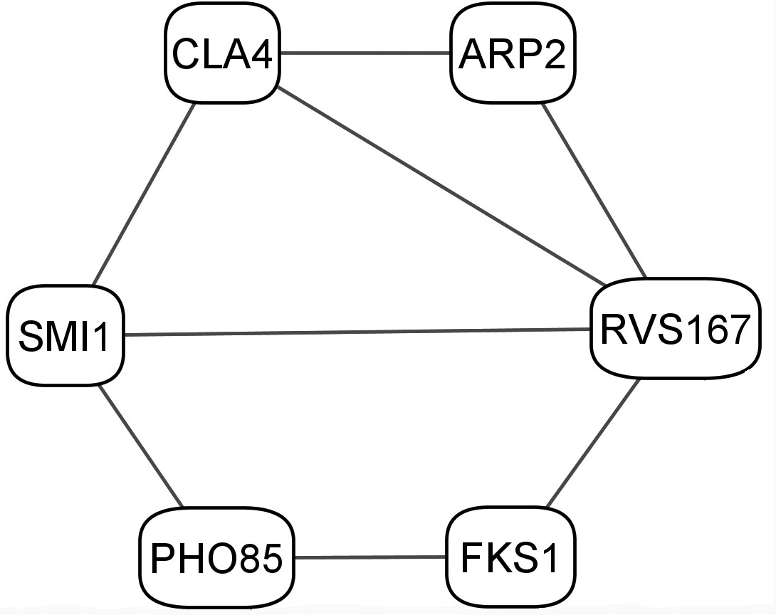 http://static-content.springer.com/image/art%3A10.1186%2F1471-2105-7-355/MediaObjects/12859_2006_Article_1094_Fig5_HTML.jpg