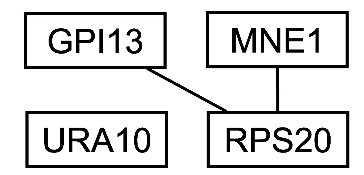 http://static-content.springer.com/image/art%3A10.1186%2F1471-2105-7-355/MediaObjects/12859_2006_Article_1094_Fig7_HTML.jpg